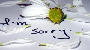 I'm sorry1